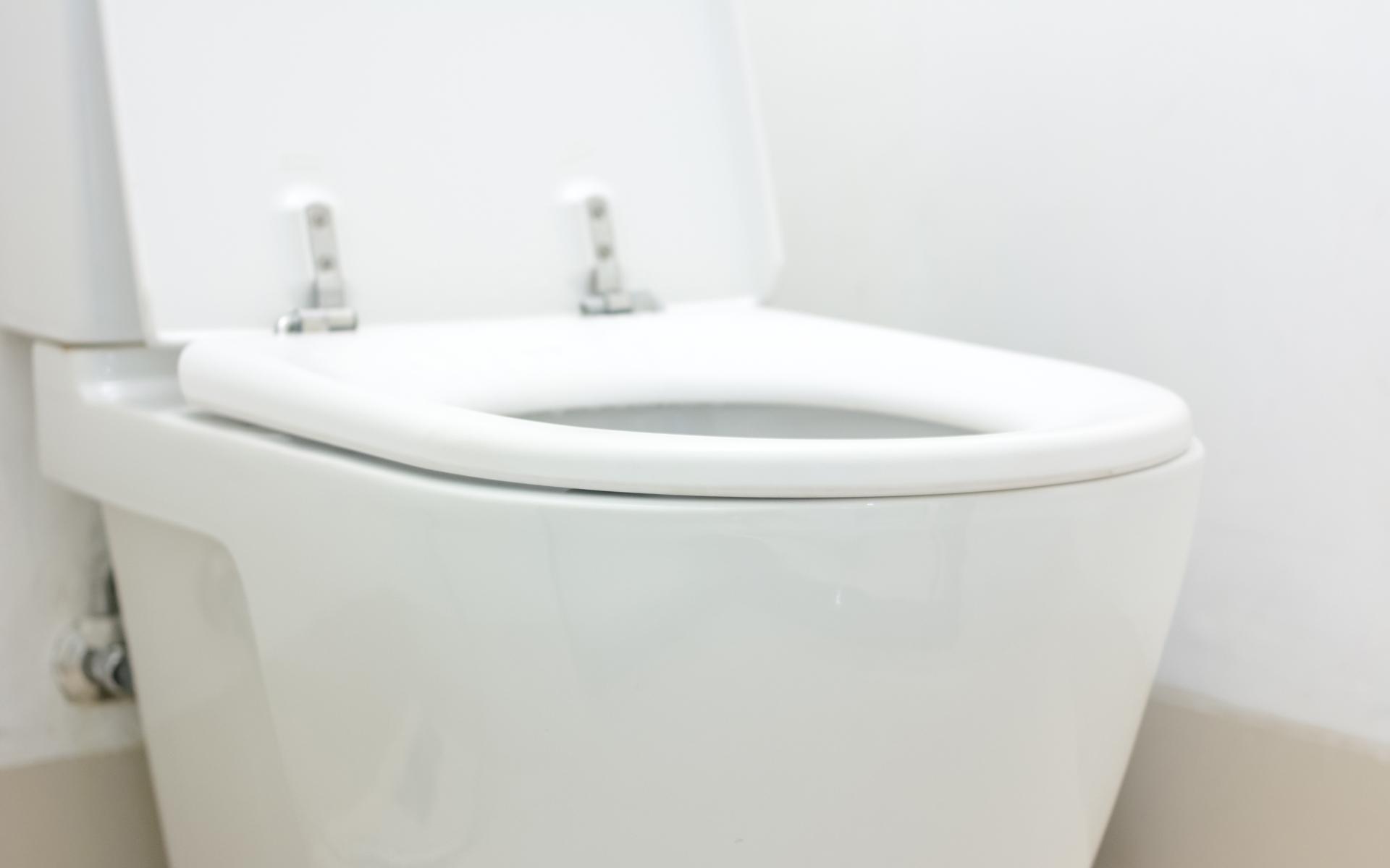 Bristol Toilet Repair